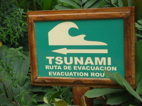 Sheraton Buganvilias Resort & Convention Center: Evacuation route