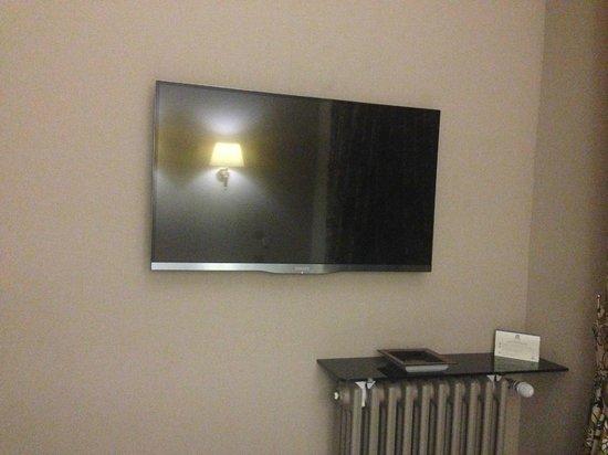 Hotel Regent's Garden: TV