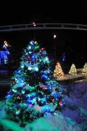 Santa's Village: More lights