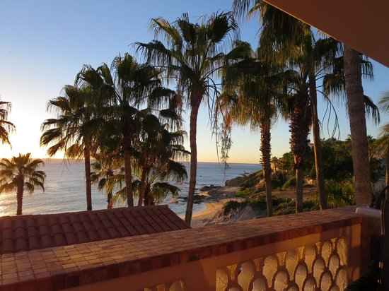 Cabo Surf Hotel : view of the beach