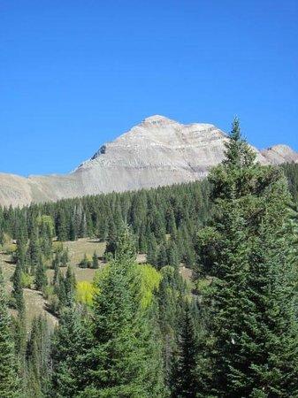 San Juan National Forest: Echo Basin Road and Hesperus Peak (13,000+ feet)