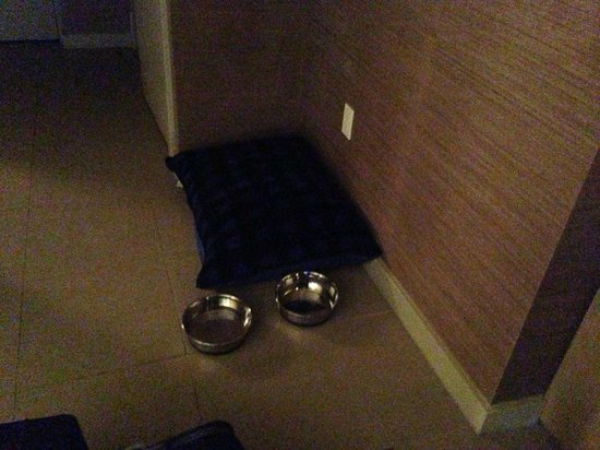 Hotel La Jolla, Curio Collection by Hilton: Dog bed and bowls!