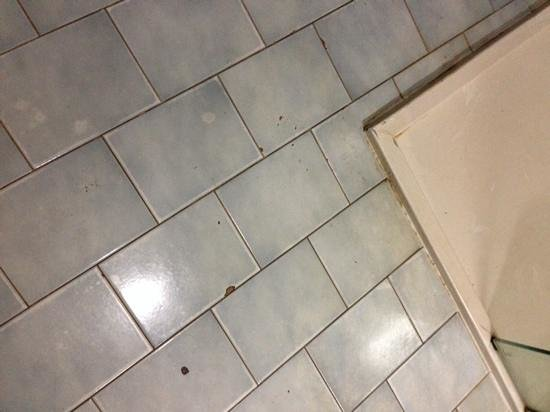 Barcelo Montelimar : bathroom floor