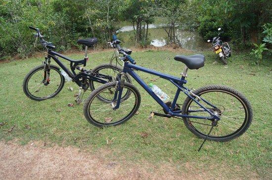 Idle Tours: Bikes