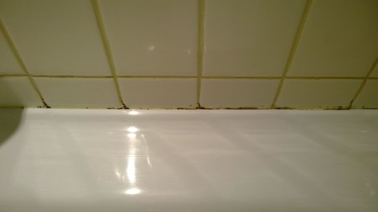 Parmelia Hilton Perth: Mold in the bathroom