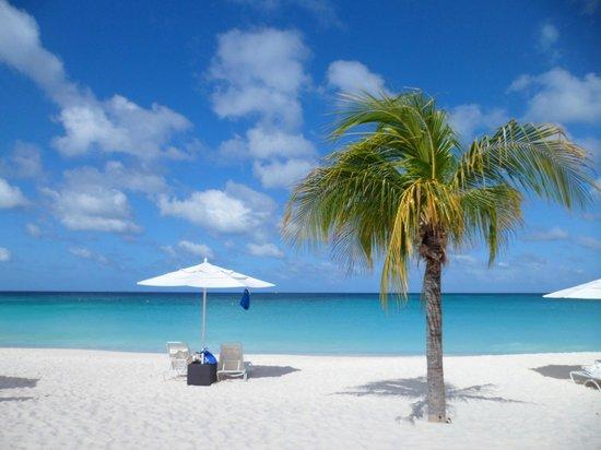 Bucuti & Tara Beach Resort Aruba: Barraca na praia em frente ao Hotel