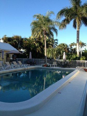 Lemon Tree Inn : Pool