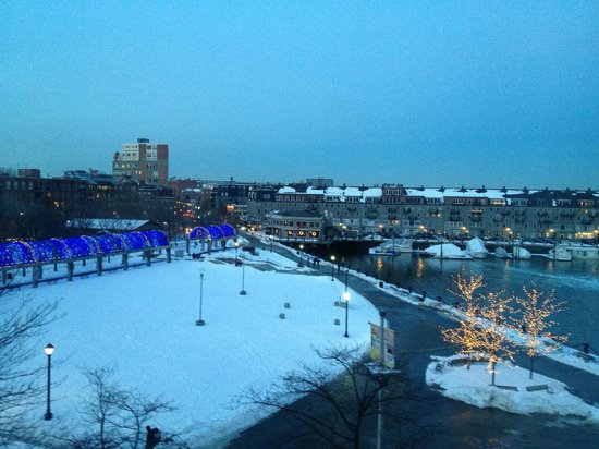 Boston Marriott Long Wharf : View of the park from our room