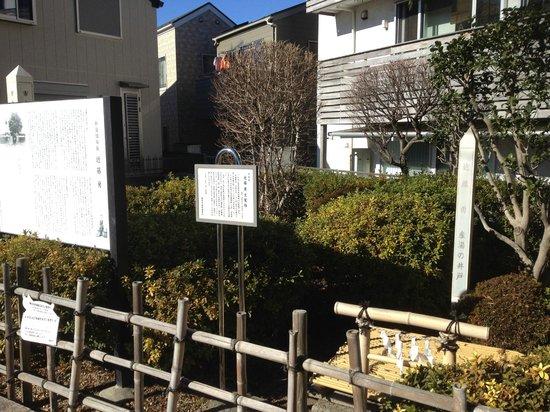 Birthplace of Kondo Isami : 井戸跡