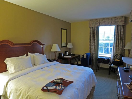 Hampton Inn Charleston - Historic District: Room 348