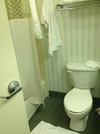 Hampton Inn Naples I-75 : Bathroom