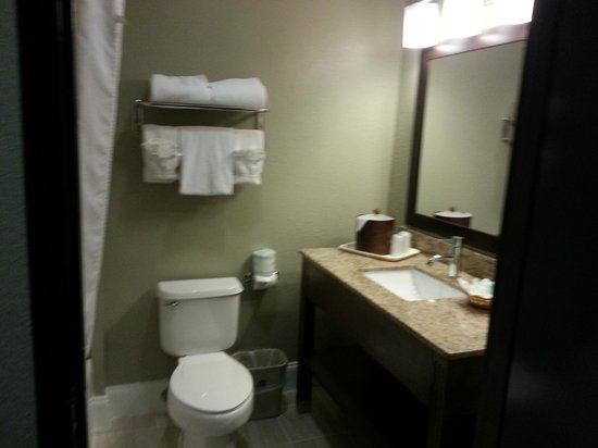 BEST WESTERN Airport Inn & Suites: Bathroom