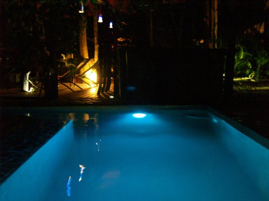 Canaima Chill House: the pool