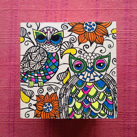 Saket Bed and Breakfast: Hand Painted Owl Box (thanks Natalie!)