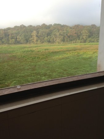 Rangerwood Nature Castle: View from the bathroom- room 201