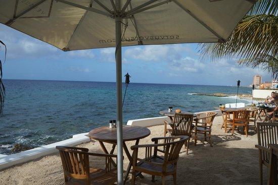 Scuba Lodge & Suites: A parte dos fundos, local do restaurante e de uma das piscinas, é na beira do mar.