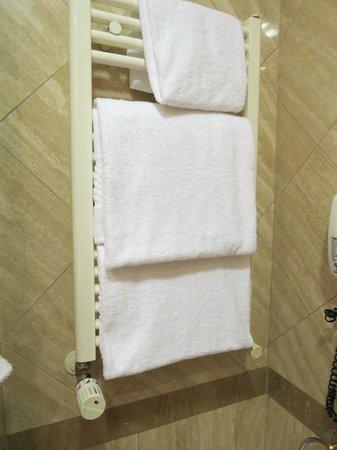 Barberini Hotel: Towel warmer
