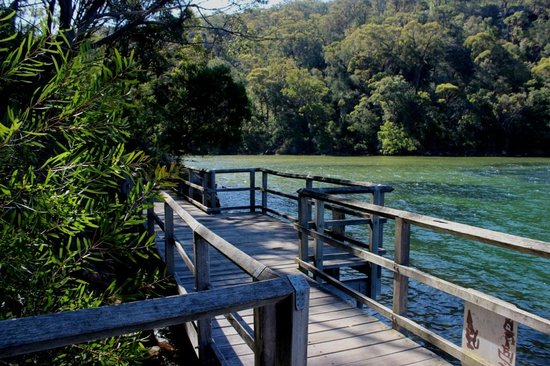 Ku-ring-gai Chase National Park: Another End in Apple Tree Bay