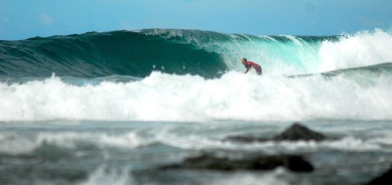 Aloha Amigos : hop skip and a short walk to dreamland