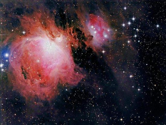 Kiwi Observatory: Great Orion Nebula