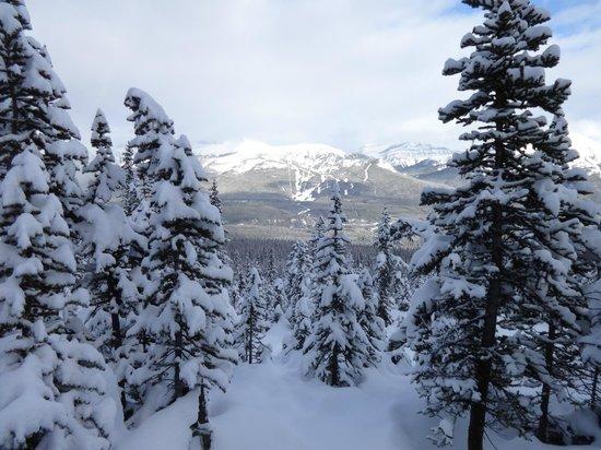 Fairmont Chateau Lake Louise : Snow shoeing
