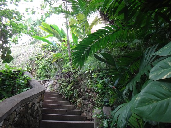 Couples Sans Souci: Beautiful landscaping and stair walkways