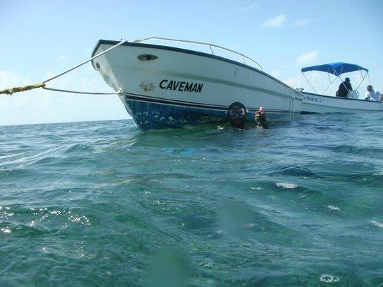 Caveman Snorkeling Tours, Caye Caulker, Belize C.A.
