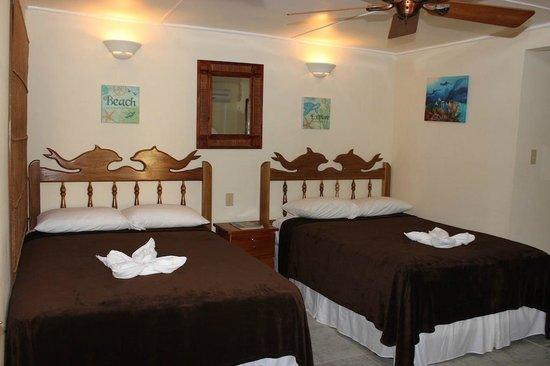 Blue Marlin Beach Resort: Oceanview Room