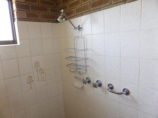 Arcadia Motor Inn : shower
