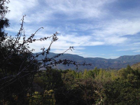 Copalli Malinalco: La vista desde la terraza