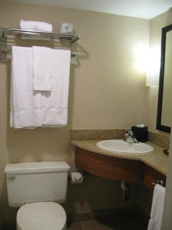 Sheraton Atlanta Hotel : Bathroom