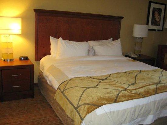 Columbia Marriott: Bed