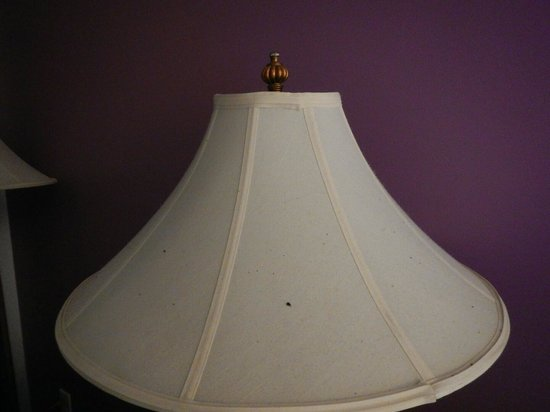 Maison St. Charles Hotel and Suites: trash on lamp shade from heater