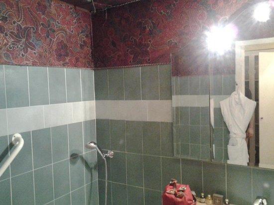 Chateau D'Ermenonville : salle de bain peu hygiénique