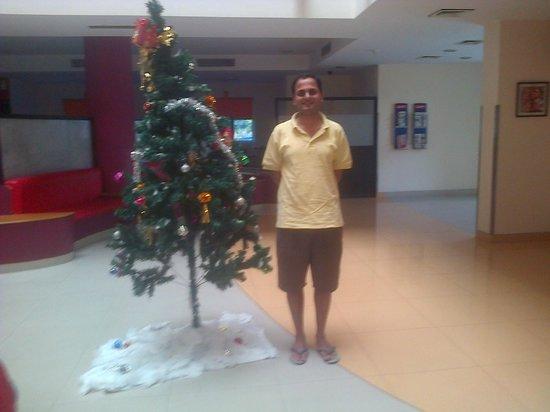Ginger Nashik : Christmas Tree and Me