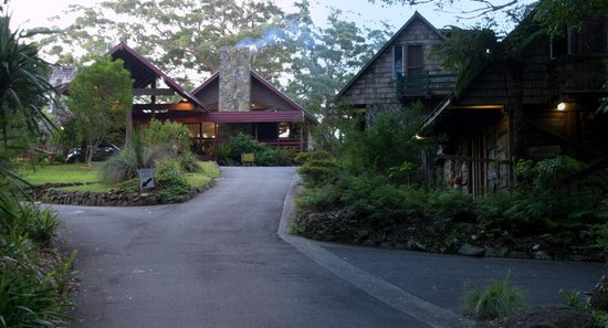 Binna Burra Mountain Lodge : View when arriving at the Lodge