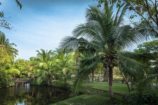 Garden Homestay Phan Thiet PhanThiet Vietnam