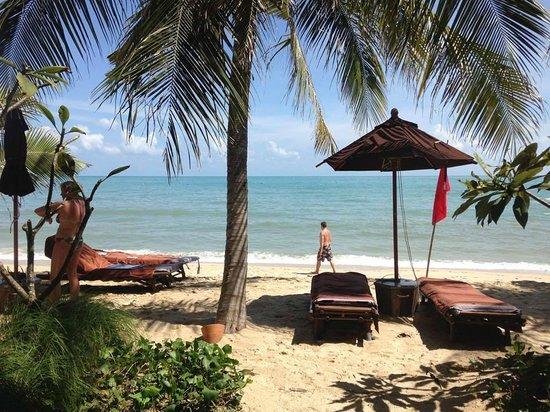 Buri Rasa Koh Phangan: window view