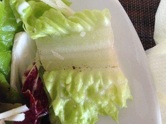 Angsana Laguna Phuket : Dirt in salad at Marketplace.  Watch out!