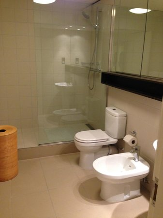 Monarch House: 1st apt - master toilet - clean and big