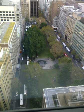 Amora Hotel Jamison Sydney: The park out the front door.