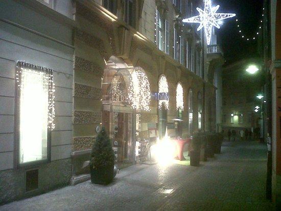 Hotel Greif: hotel