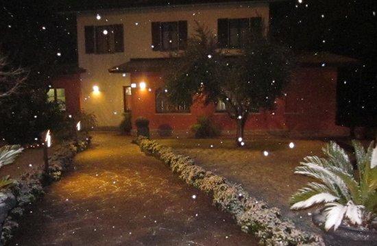 Camelot Gustoepalato : nevica!
