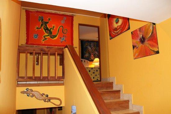 Bahia Pez Vela Resort : Hallway