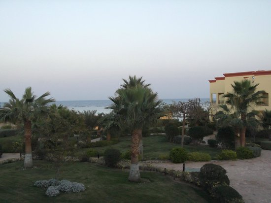 Blue Reef Red Sea Resort : Panorama dalla camera