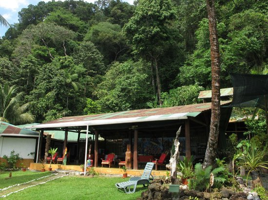 La Leona Eco Lodge: The hotel / bar (good veggie food!)