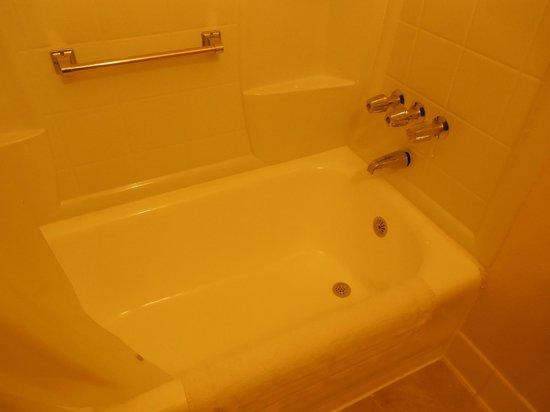 Hollywood Historic Hotel : Bathroom