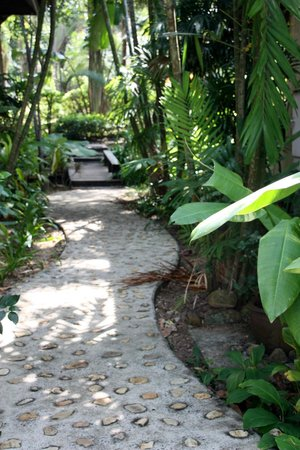 Ramayana Koh Chang Resort: Lovely grounds