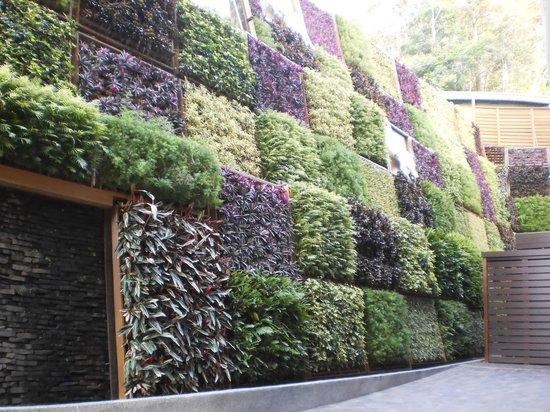 """Lealea Garden Hotels-Sun Moon Lake-Moon: """"Garden"""" on the wall"""