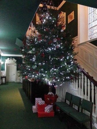 Mansion House Llansteffan : Treemendous !